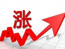 舍得上半年净利润暴涨348%,国资、私募纷纷高位减持